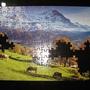 2010.08.29 150片Alpes Berneses, Suiza (5).JPG