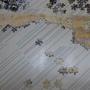2010.07.21 500片Piccadily Circus (8).JPG