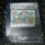 2010.08.17 Liberty Puzzles (20).JPG