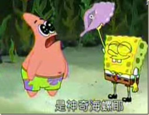 是神奇海螺耶