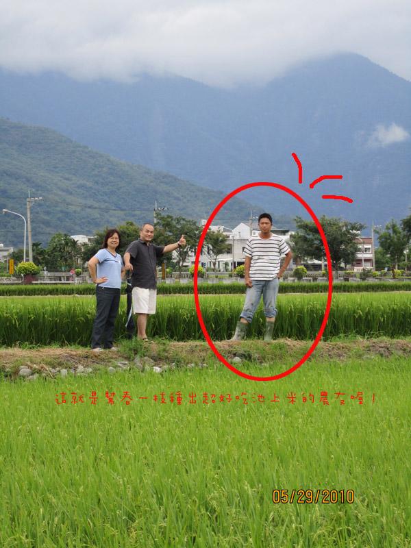 rice-taitung-3.jpg