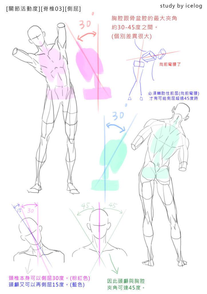 脊椎03 -側屈m