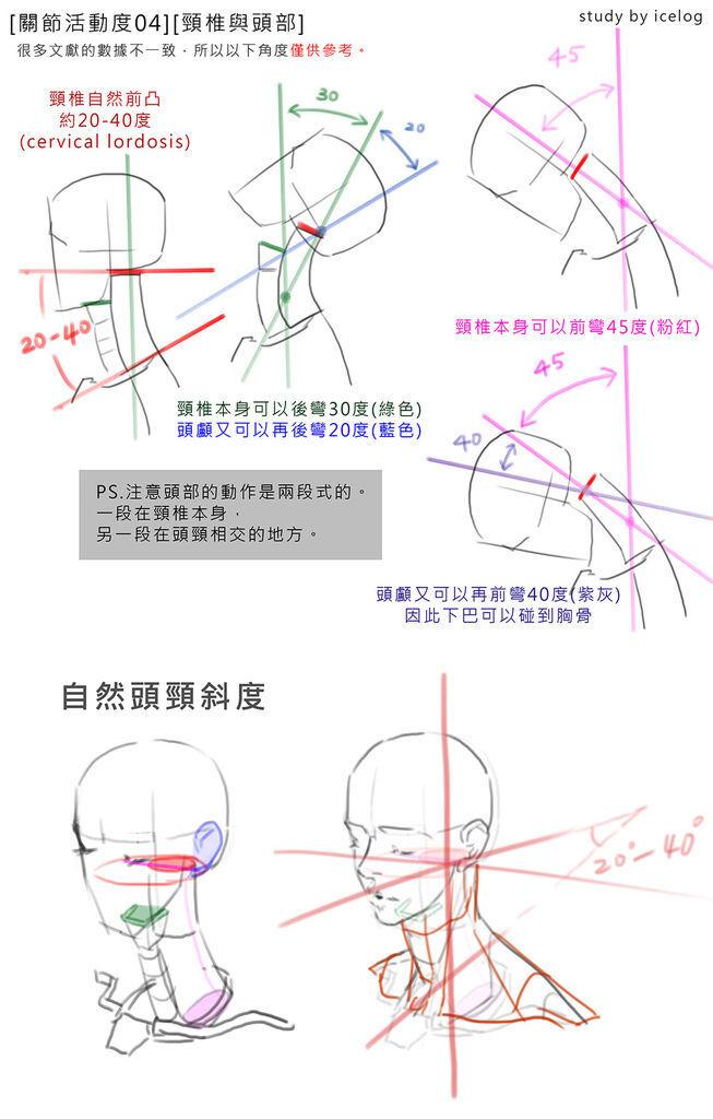 脊椎04 -頭頸m