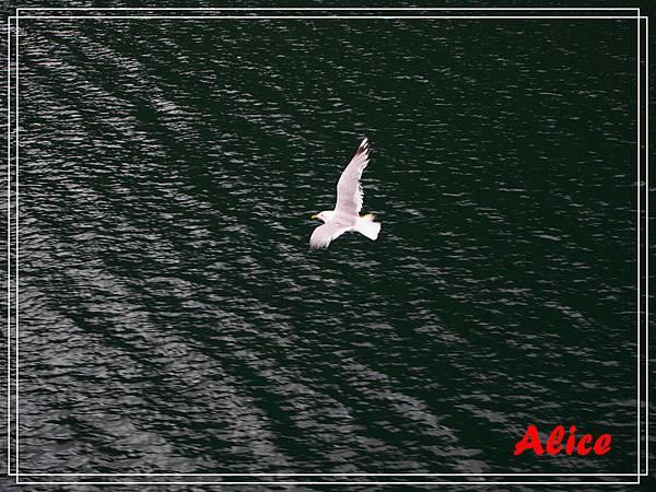 蓋倫格峽灣06.jpg