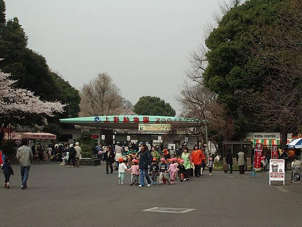 擦身而過的上野動物園