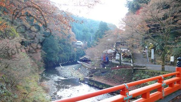 過橋  上坡奇點就在右前方