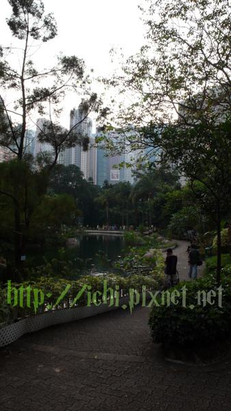 香港公園 拿相機的很多