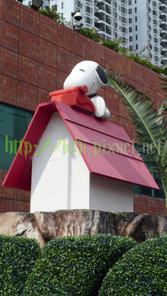 門口造景上面的打字Snoopy