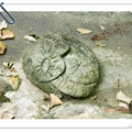 洪米花阿嬤的石雕