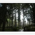 溪頭青年活動中心、溪頭自然生態教育園區