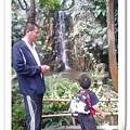 親子旅遊活動:積木夢工廠、科博館、植物園