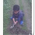 就是愛挖土嘛