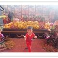 2013南投世界茶業博覽會暨中台灣農業博覽會