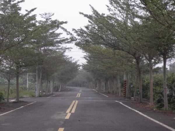 附近風景1.JPG
