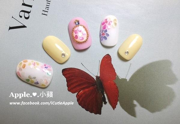 w夏日貝殼粉應用26