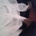 很討厭的短裙。.JPG