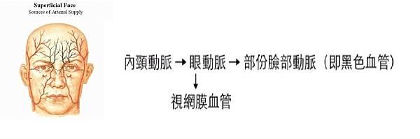 page1-2 - 複製.jpg