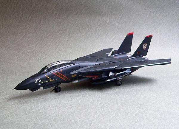 F-14A_RAZ_011.jpg