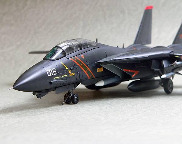 F-14A_RAZ_001.jpg