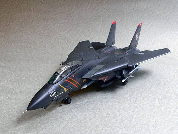 F-14A_RAZ_002.jpg