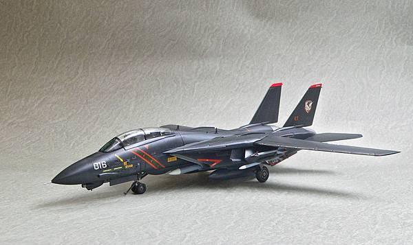 F-14A_RAZ_010.jpg
