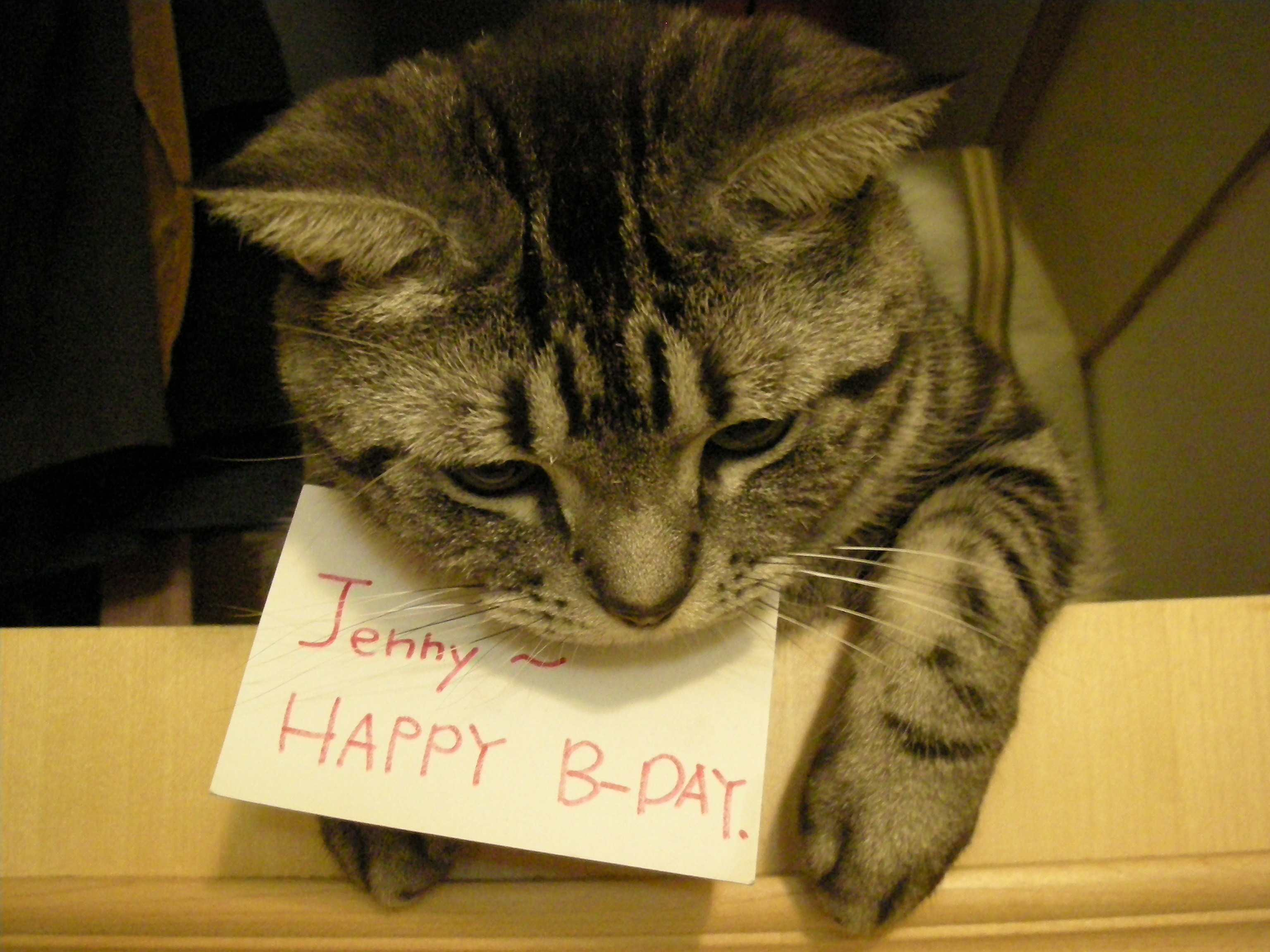 only for Jenny 1.jpg
