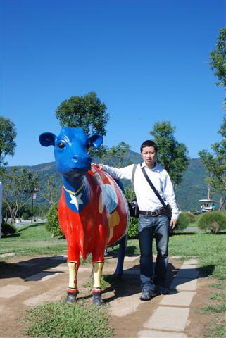 Momoboss & 彩色牛