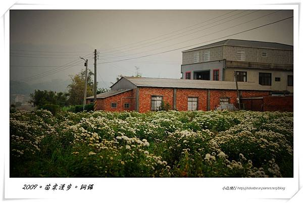 DSC_0109-1.jpg