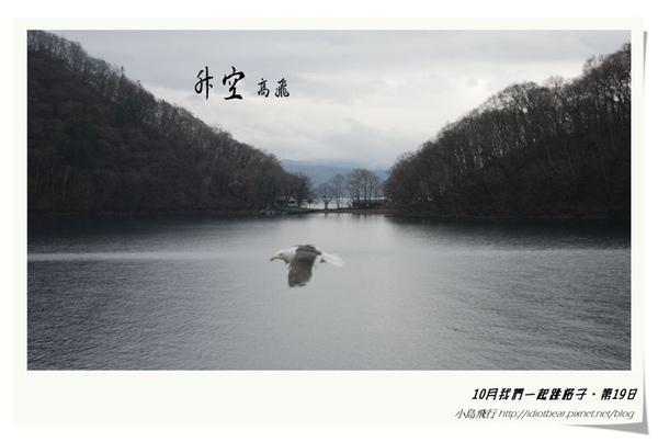 升空4.jpg