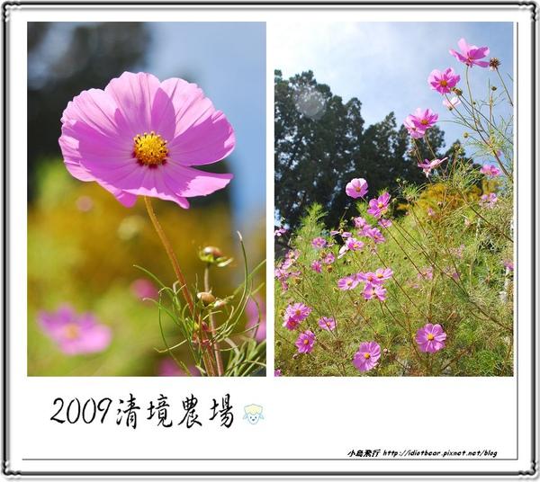 DSC_0013-1.jpg