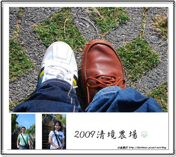 DSC_0071-1.jpg