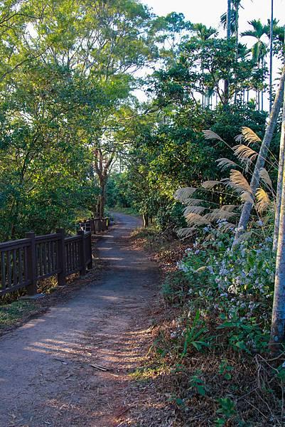 南投 觀日步道