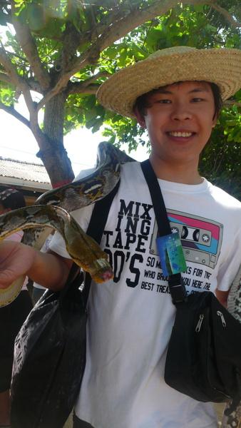 峇里島之旅_有太多魚6