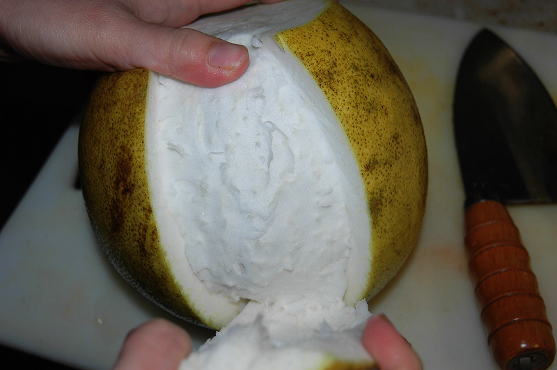 切柚子-1.jpg