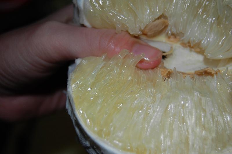 剝柚子-1.jpg