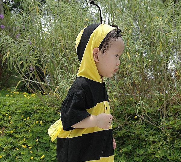 小蜜蜂-側面-1.jpg