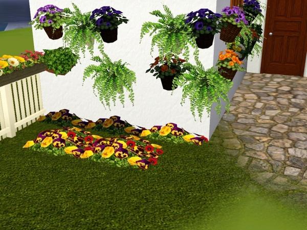 plantas dversas de luna.jpg