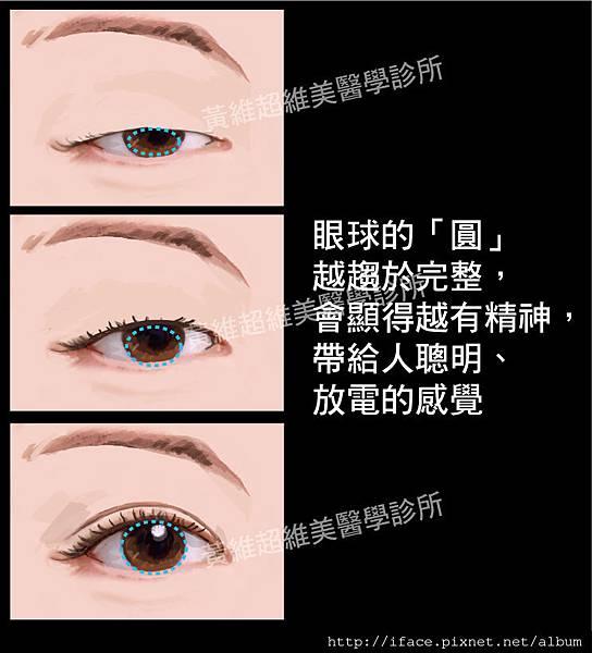 雙眼皮文章14