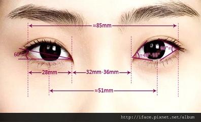 眼部美學的黃金比例