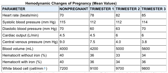 hemadynamic change while pregnancy