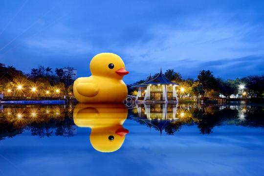 黃色小鴨 9/19 來台灣!高雄、台中、基隆等您來賞鴨....