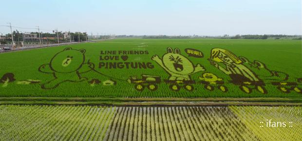 【圖一】歡迎喜愛LINE FRIENDS角色的民眾趁彩稻藝術節期間造訪南州
