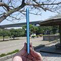 DSC09439.png