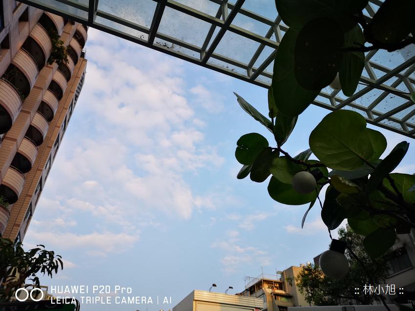 HUAWEI P20 Pro 實際拍照成果 (ifans 林小旭) (5).png