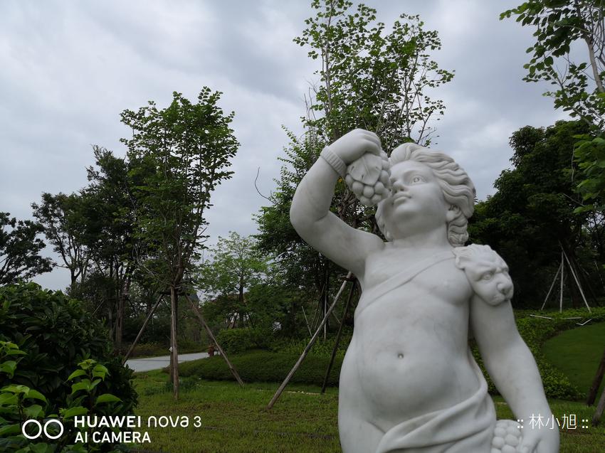 HUAWEI nova 3 拍照(ifans 林小旭) (24).png