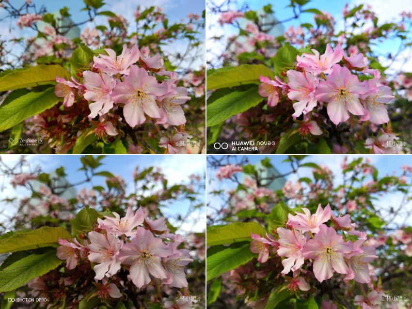四款中階機拍照對戰!ASUS ZenFone 5Z、HUAWEI nova 3、OPPO R15 以及 SAMSUNG Galaxy A8 Star 日夜拍照廝殺比較 (ifans 林小旭) (28).png