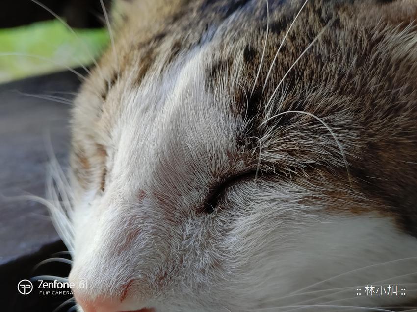 ASUS ZenFone 6 拍照 (ifans 林小旭) (66).png