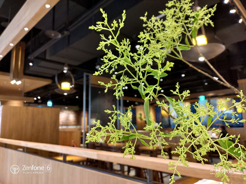 ASUS ZenFone 6 拍照 (ifans 林小旭) (7).png