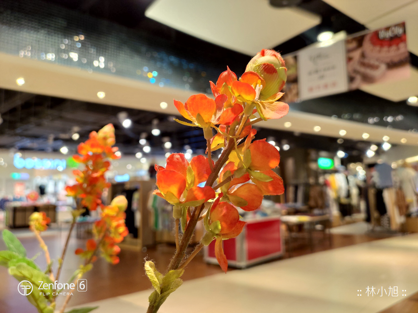 ASUS ZenFone 6 拍照 (ifans 林小旭) (121).png