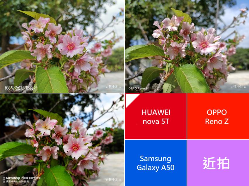 萬把元要選誰?HUAWEI nova 5T 與 OPPO Reno Z、Samsung Galaxy A50 拍照 PK 大對決 (47).png